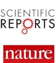 An article by Simone Righi and Károly Takács has been published by Scientific Reports